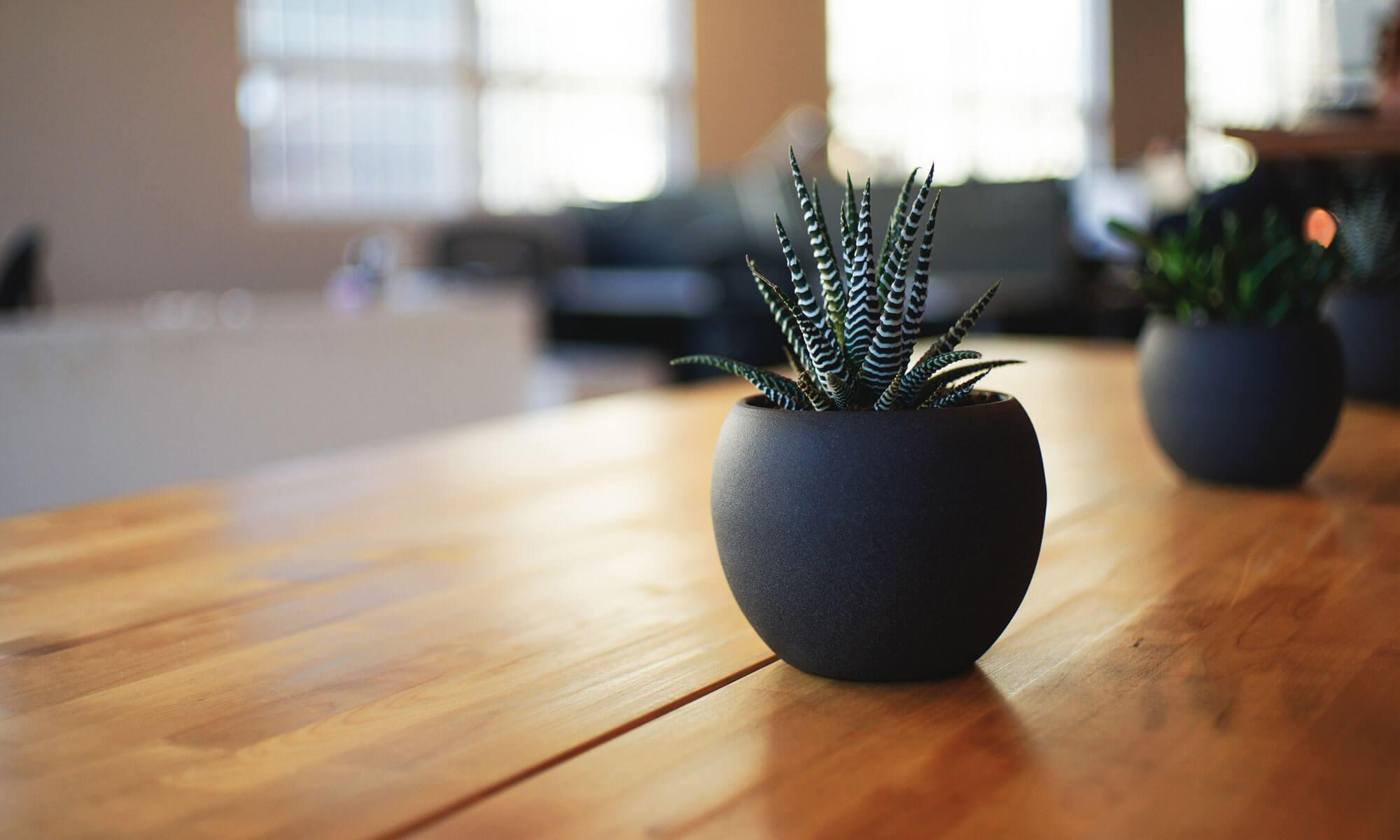 Handsfree Know-How